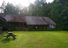 山中茶原 Janda Baik, Bukit Tinggi (Bentong)(始於 2014 年)